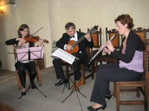 Musica Festiva, hrali uzasne!