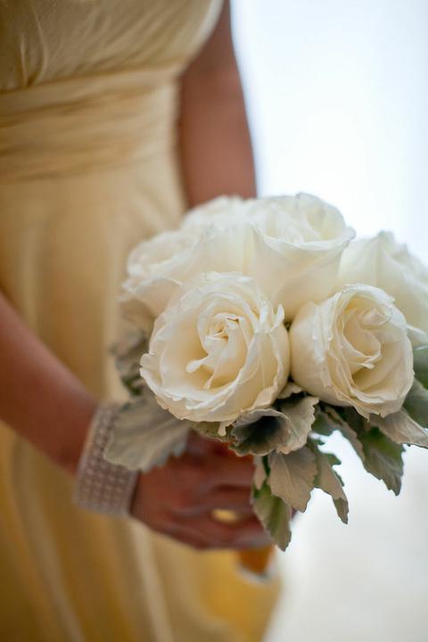 Naše představy - jak nemám ráda růže tak tyhle jsou krásný