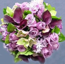 Naše fialková svatba, tak takovou bych si moc přála