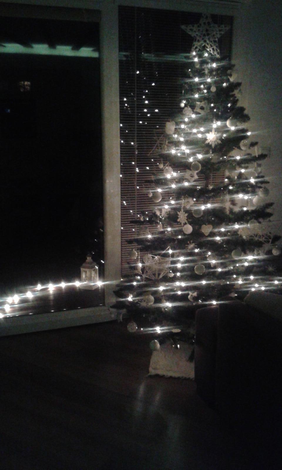 Náš dom ALEX - stastne a vesele Vianoce a stastny novy rok 2015