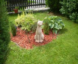 nový obyvatel naší zahrady