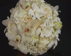 krémová, bílá a světlounce růžová.
