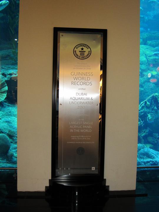 Eva{{_AND_}}Tom - Aquarium in Dubai Mall