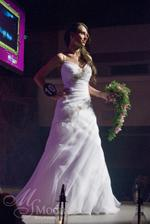 moje svadobné saty ale ciele v bielom aj zdobenie, konečne som ich našla aj niekde na obrázku :D