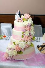 Nasa svadobná torta! Dar od kamosky-práca mojej šikovnej svokry :-)