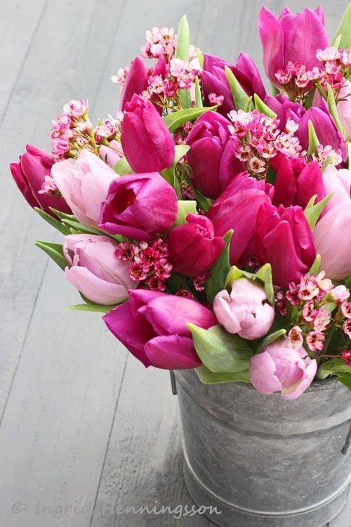 Prvý jarný deň sme mali včera a my sme sa rozhodli, že Vám trošku priblížime, čo si to na nás príroda na #jar pripravila 🙂  Aké nádhery nám začínajú rašiť zo zeme, a ako tu krásu vieme použiť nielen u seba #doma, alebo aj na svadbe.   Viac sa dozviete u nás na blogu:  https://www.easywedding.sk/blog/privitajme-spolu-jar/  #svatebniinspirace #svadobneinspiracie #svadba2021 #marec #svadbapreteba #svadba #svatba #blog #svadobnyblog #jarnekvety #jarneinspiracie  #tupipan #narcis - Obrázok č. 3