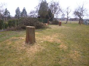 došlo na dva největší stromy v zahradě
