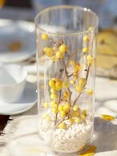biela fazula na spodok vo vaze