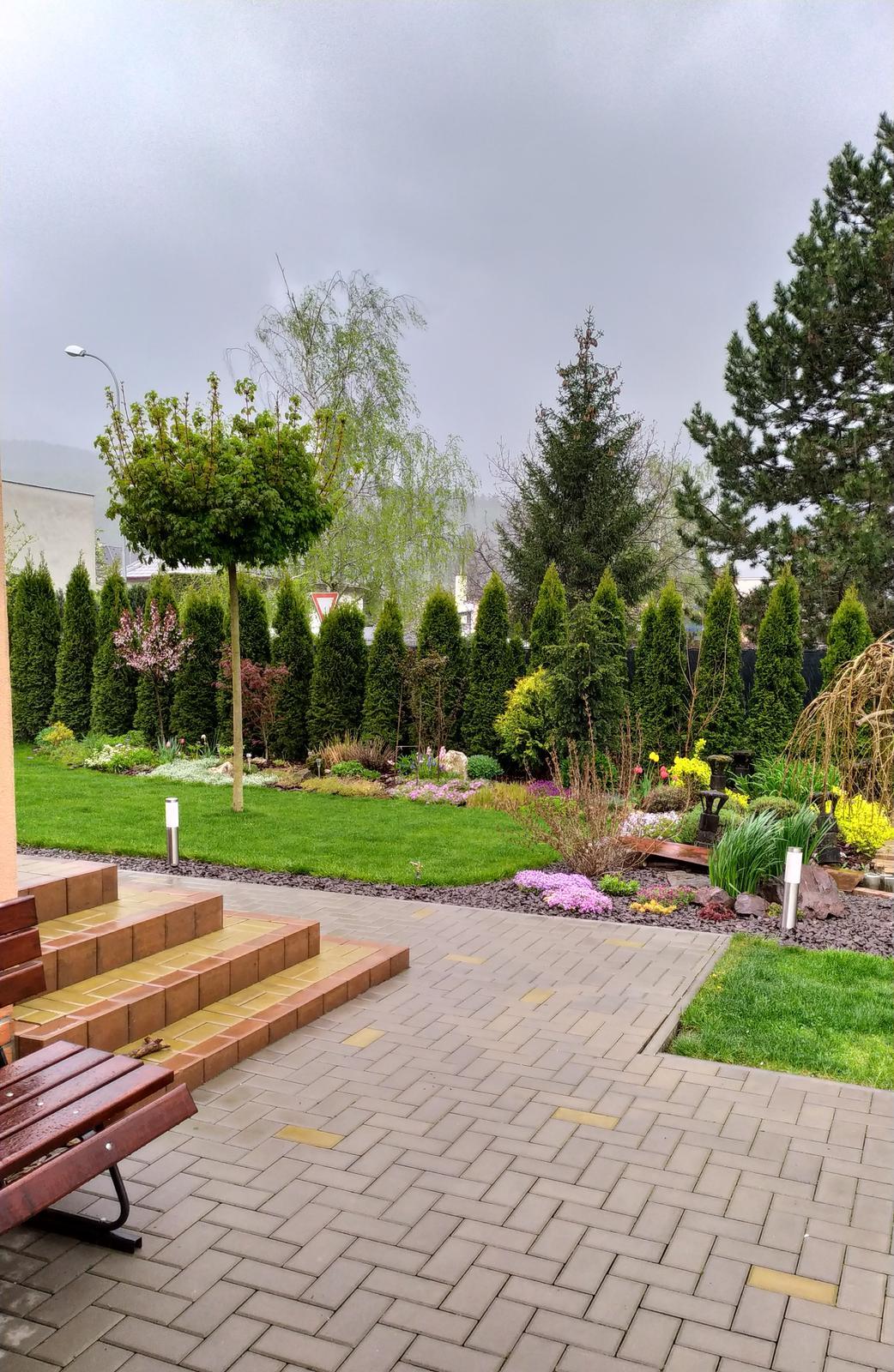 2021 - Dnes ráno po búrke. Konečne dážď 😊, záhrada začne prekvitať 😍