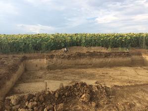 27.7. 2018 - Začali sme kopať :)