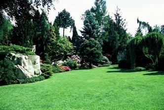 Meditační zahrada v Plzni....