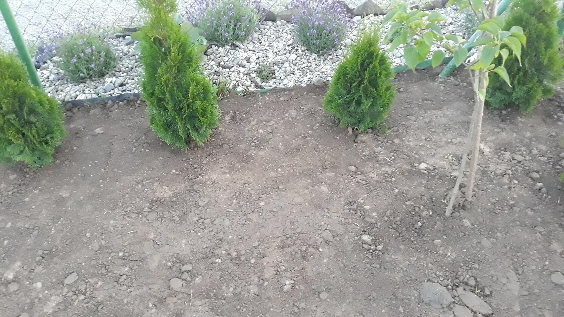 Dzuriš Garden - Obrázok č. 8