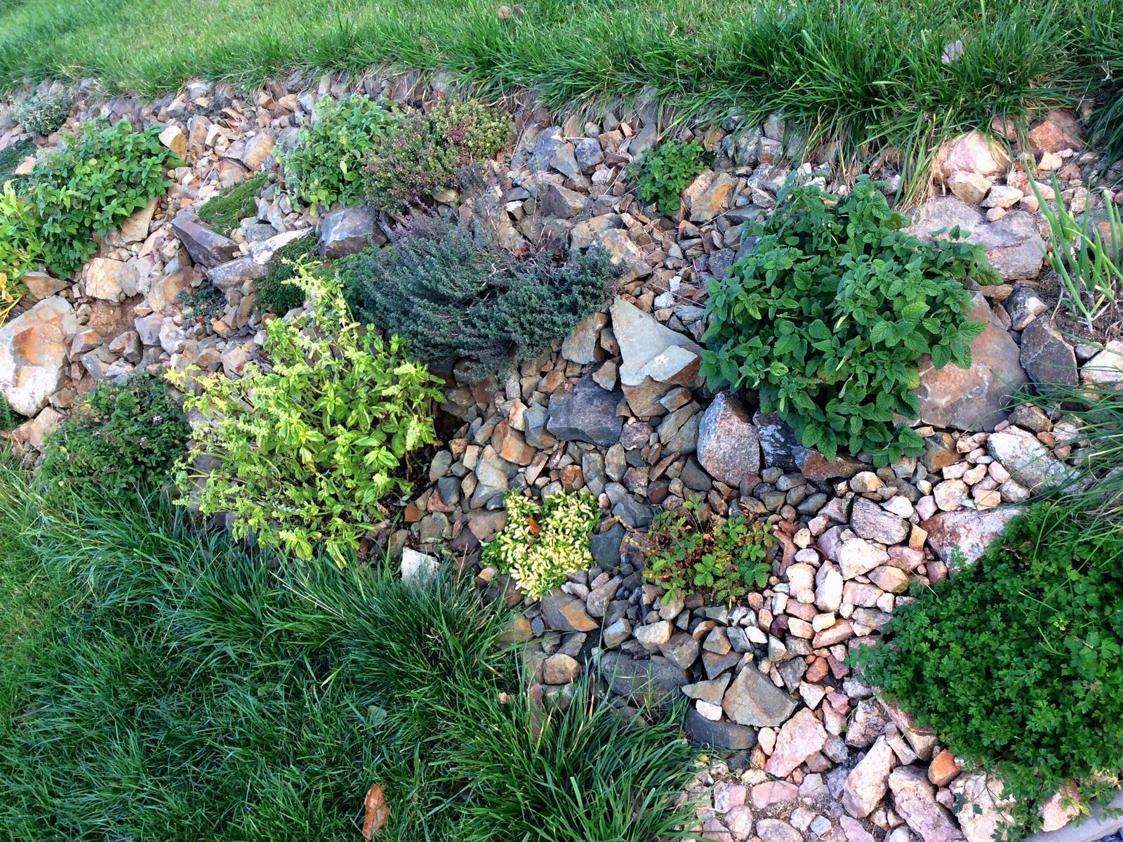 Skřítčí zahrada 2015 - 2020 - Listopad 2018 - bylinková skalka je přibližně ze 2/3 hotová, rozmarýn je už od září přenesený dovnitř domu