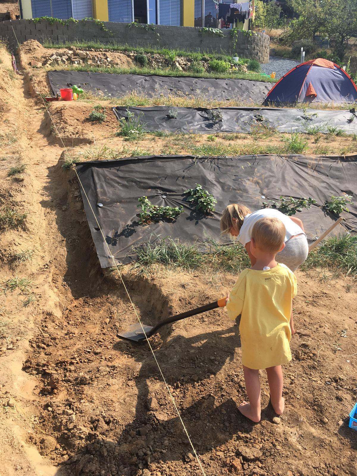 Skřítčí zahrada 2015 - 2020 - Srpen 2018 - zasazenému rostlinstvu se převážně daří