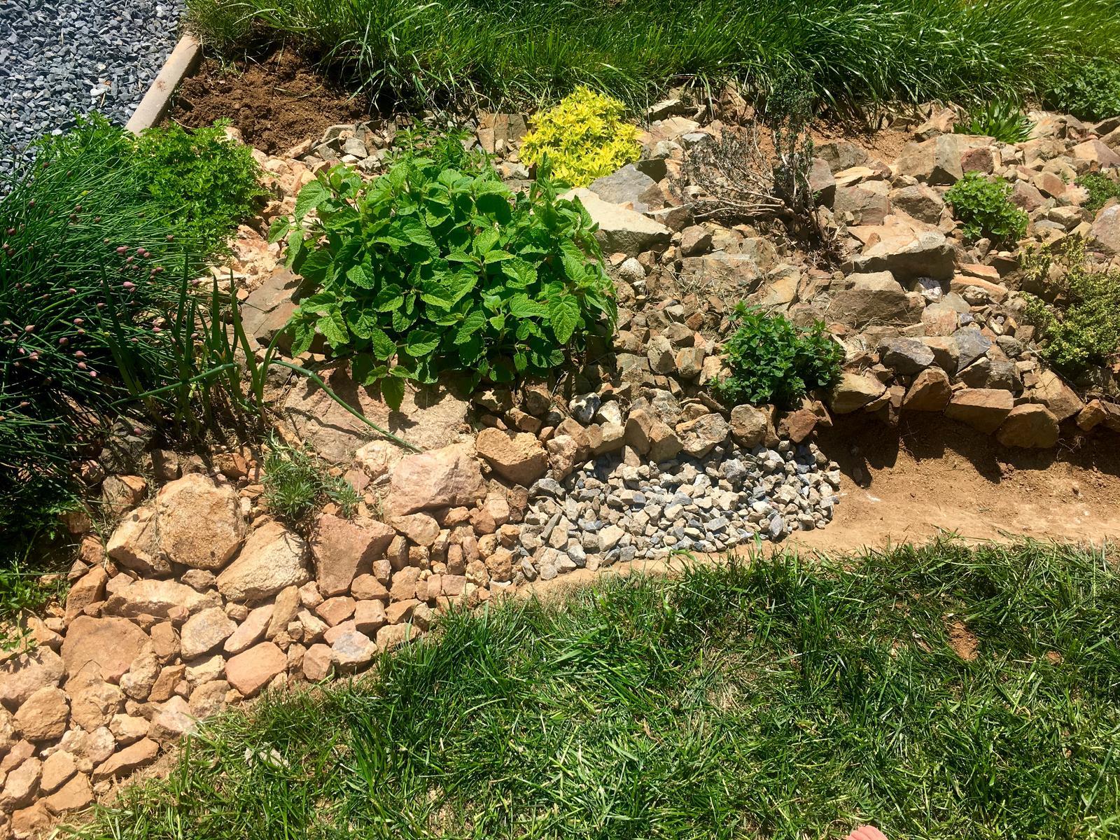 Skřítčí zahrada 2015 - 2020 - Duben 2019 - poučení z let minulých, že na svahu pochytat a udržet vodu je nezbytné, takže buduju svejly