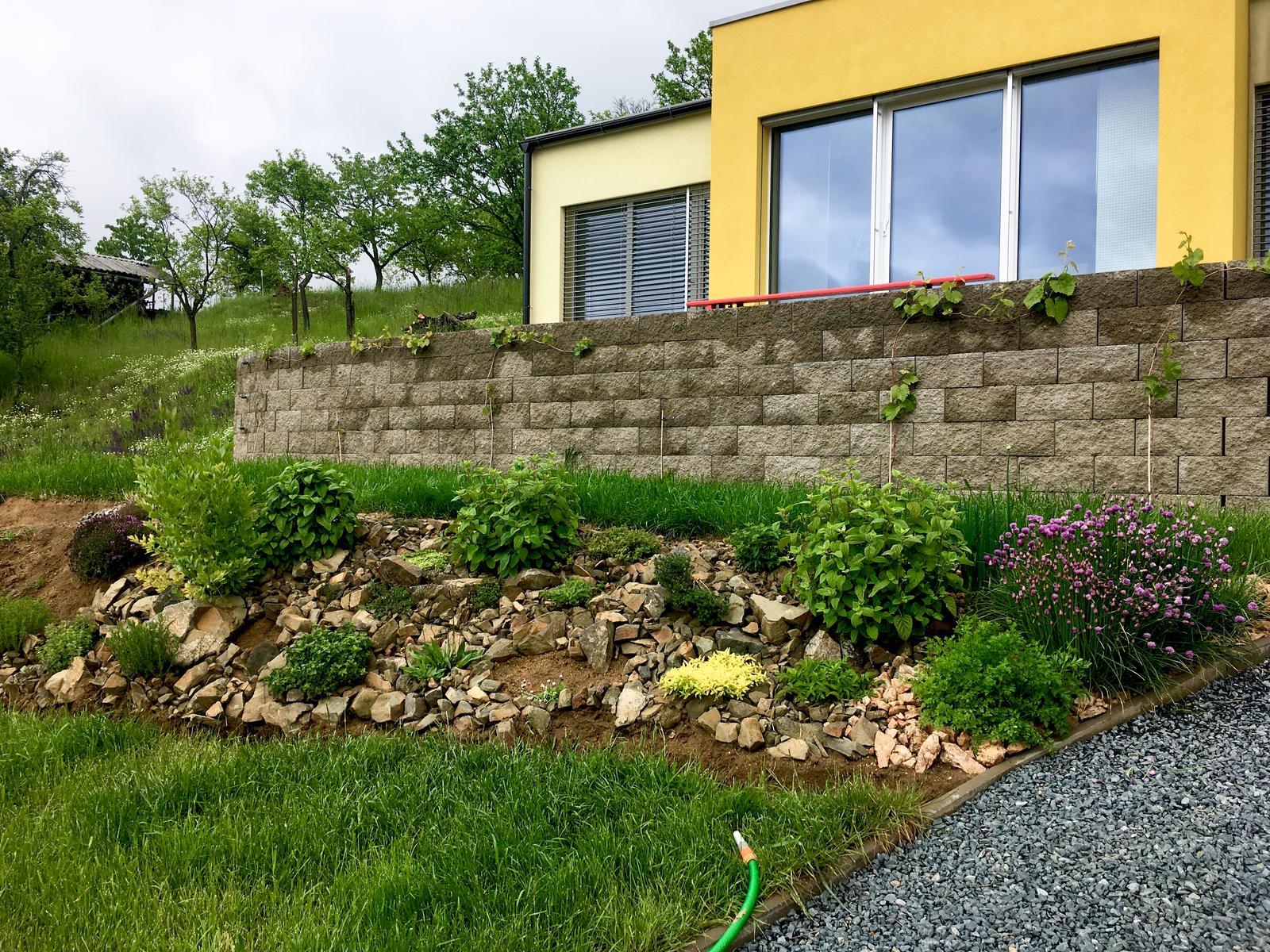 Skřítčí zahrada 2015 - 2020 - Květen 2019 - bylinkám se daří skvěle, letos chci bylinkovou skalku dokončit