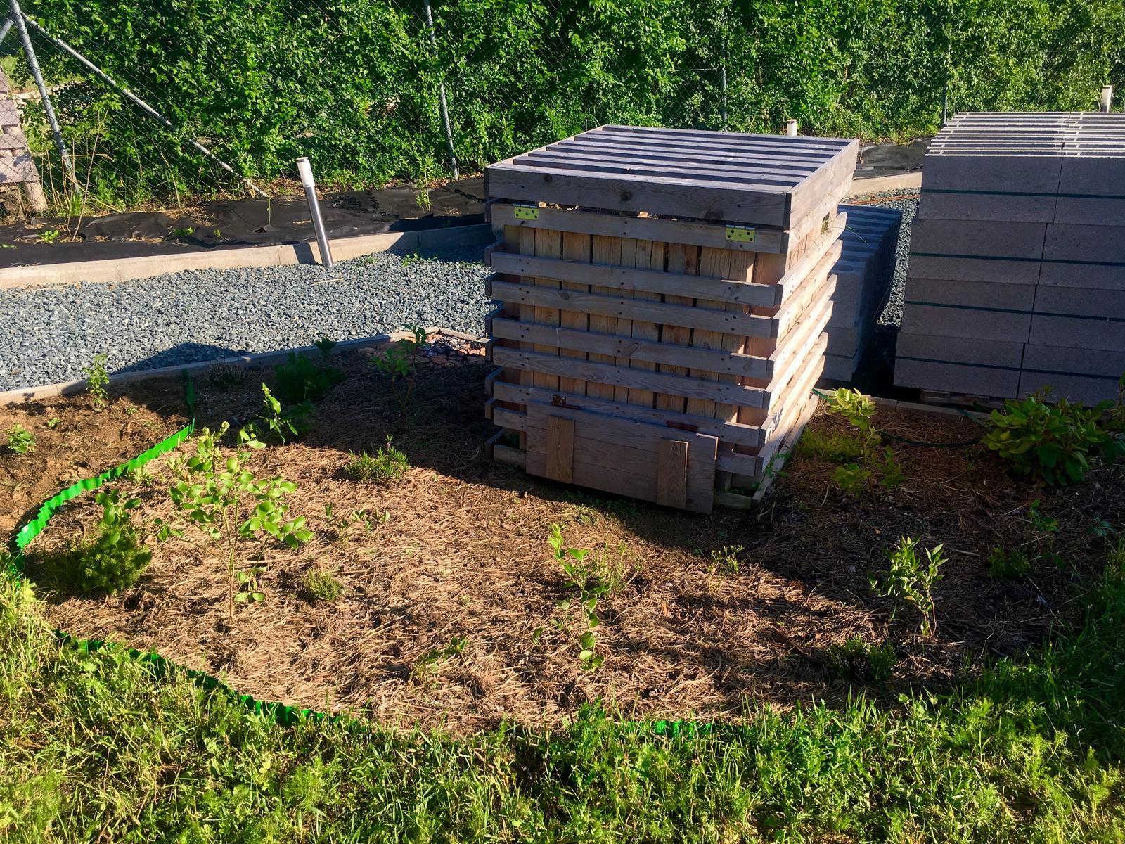 Skřítčí zahrada 2015 - 2020 - Červen 2019 - kanadských borůvek už máme konečně dost, řekla bych
