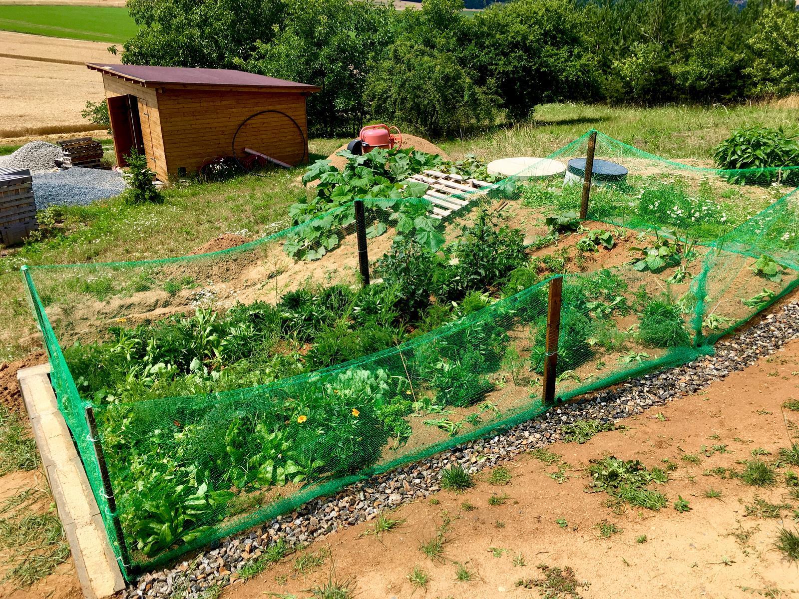 Skřítčí zahrada 2015 - 2020 - Červenec 2019 - protisrnčí zasíťovaní záhonu, verze 2.0