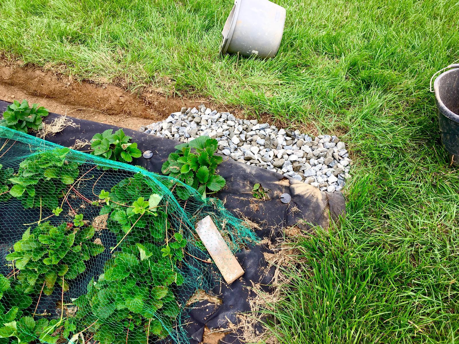 """Skřítčí zahrada 2015 - 2020 - Srpen 2019 - """"svejly"""" se osvědčily (ještě aby ne) co se týče zadržení a vsakování vody i sekání trávy, tak pokračuju po svahu dolů, na okraji terasy vykopu malý příkop (cca na šířku a hloubku rýče) a vyplním ho hrubším štěrkem"""