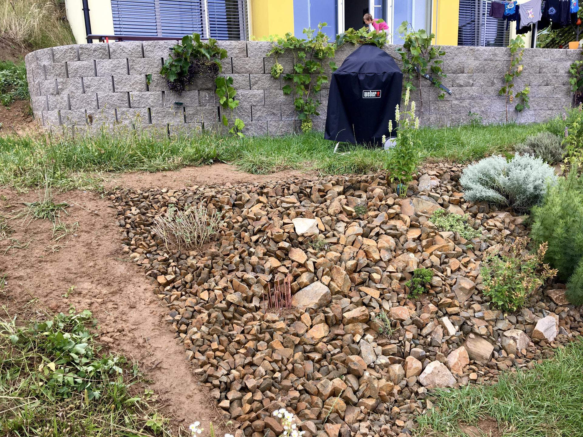 Fáze druhá ... zahrada - Srpen 2020 - konečně jsem dokončila bylinkovou skalku, na okraj jsem přesadila jitrocel a hluchavky