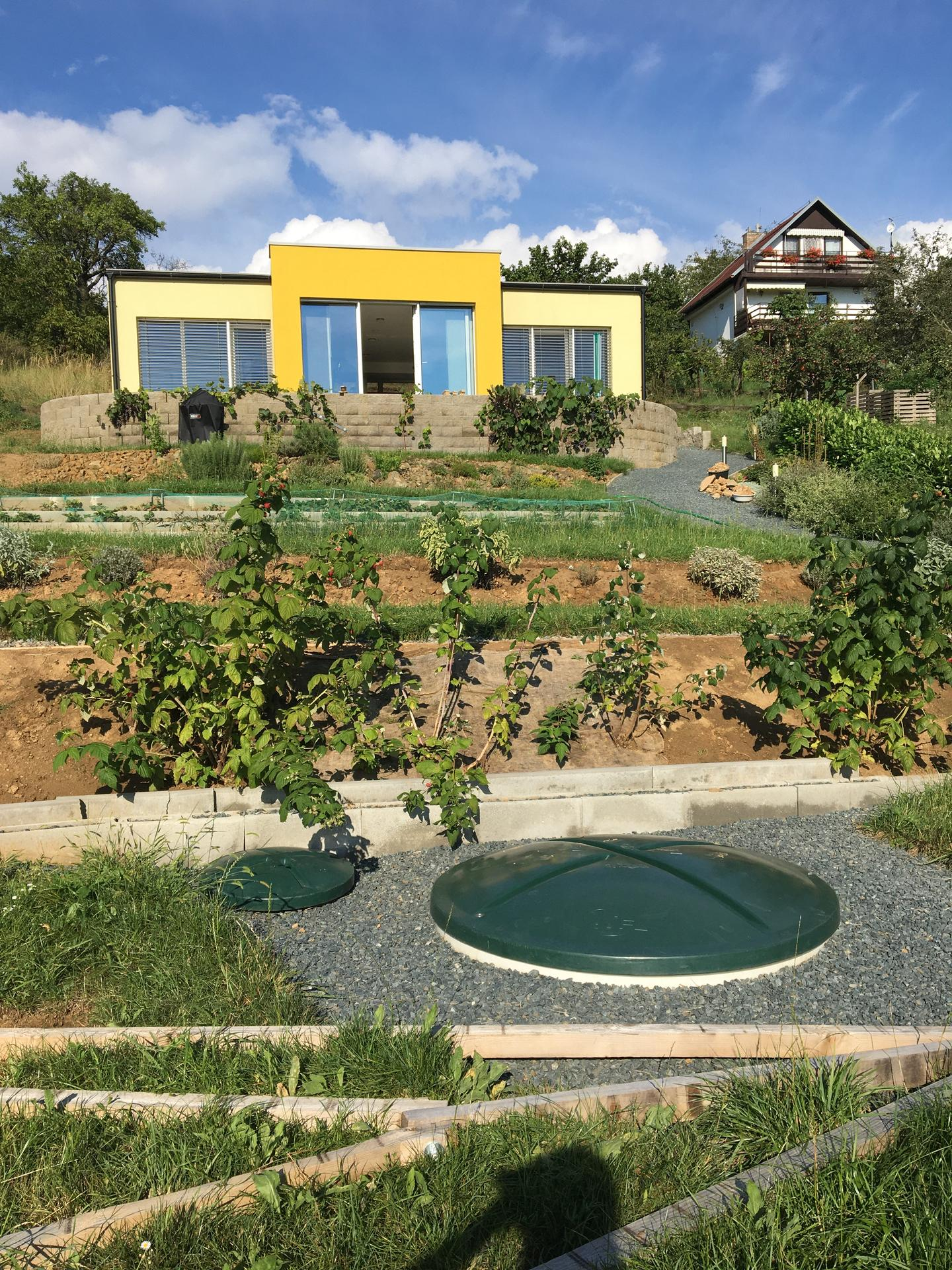 Fáze druhá ... zahrada - Srpen 2020 - maliny bují jedna radost