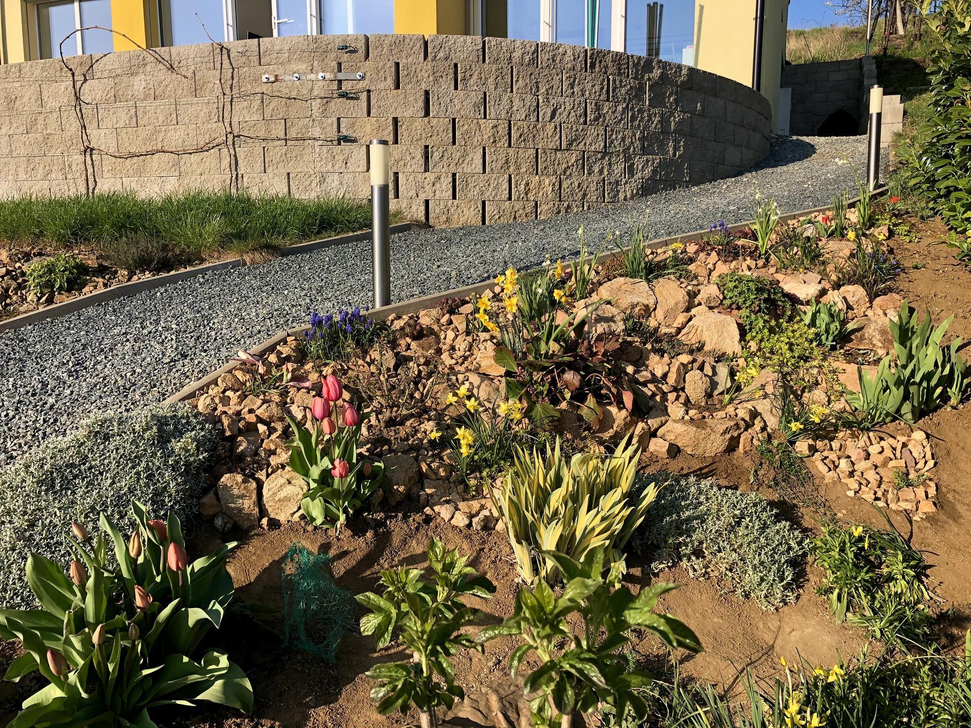 Skřítčí zahrada 2021 - Duben 2021 - a zase mi došly větší kameny, chceme ale dělat cestičku dozadu za dům, tam se jich najde dost