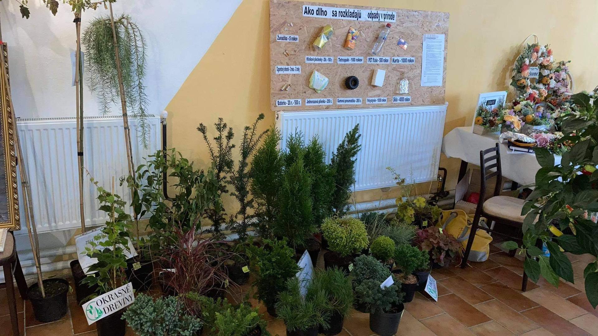 Výstava ovocia, zeleniny a kvetov Dvorianky 2021 - Obrázok č. 12