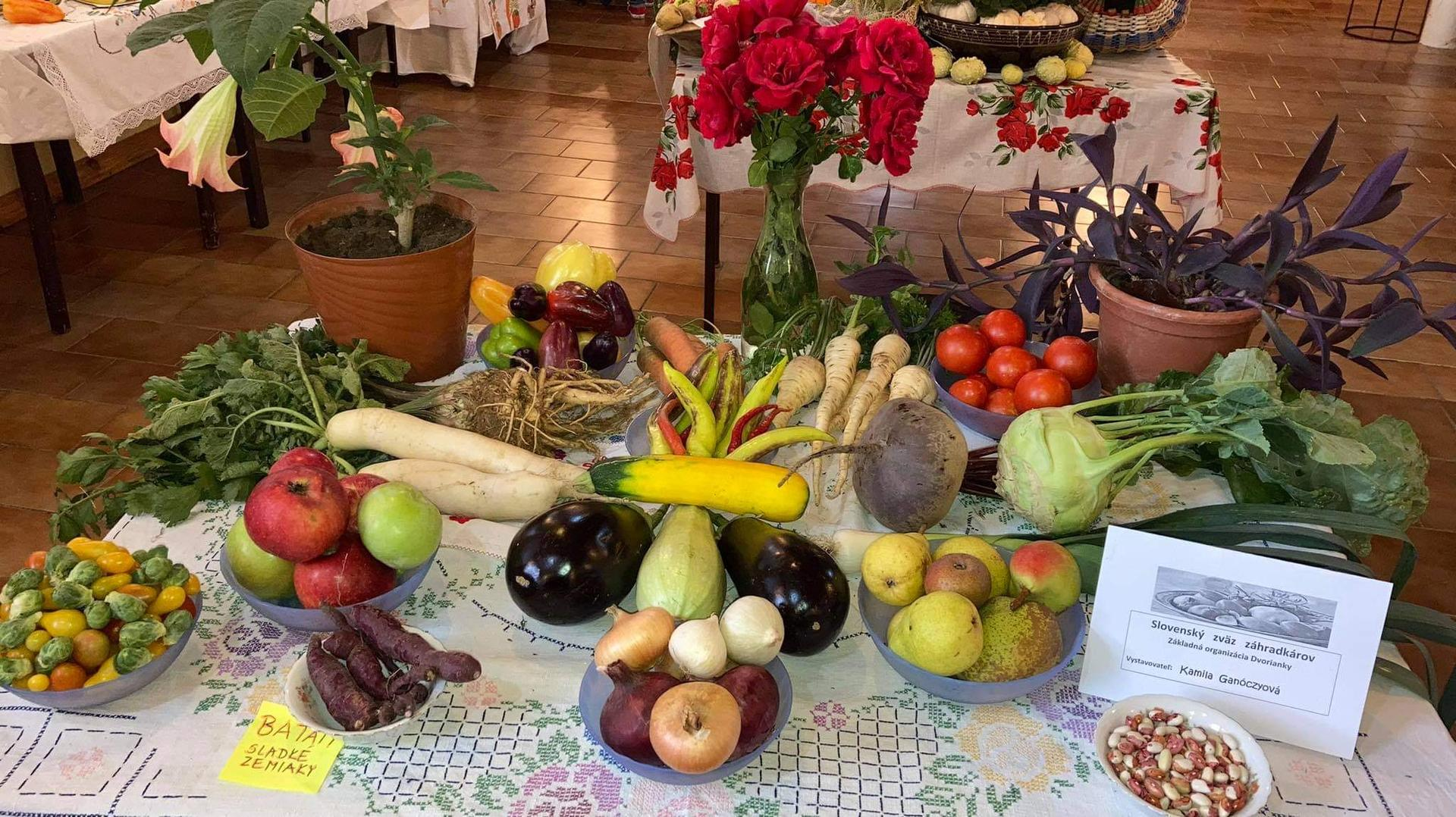 Výstava ovocia, zeleniny a kvetov Dvorianky 2021 - Obrázok č. 18