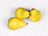 žlté hrušky
