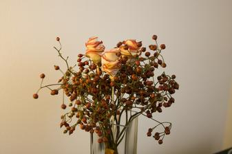 Pustila som sa do jablkových ruží :-)
