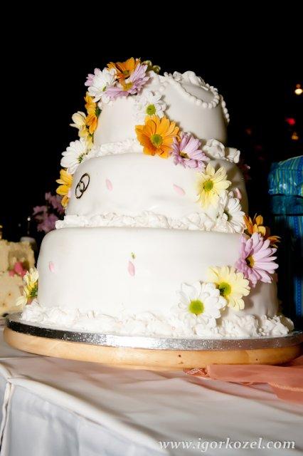 Dada a petik 2.10.210 - hlavna torta