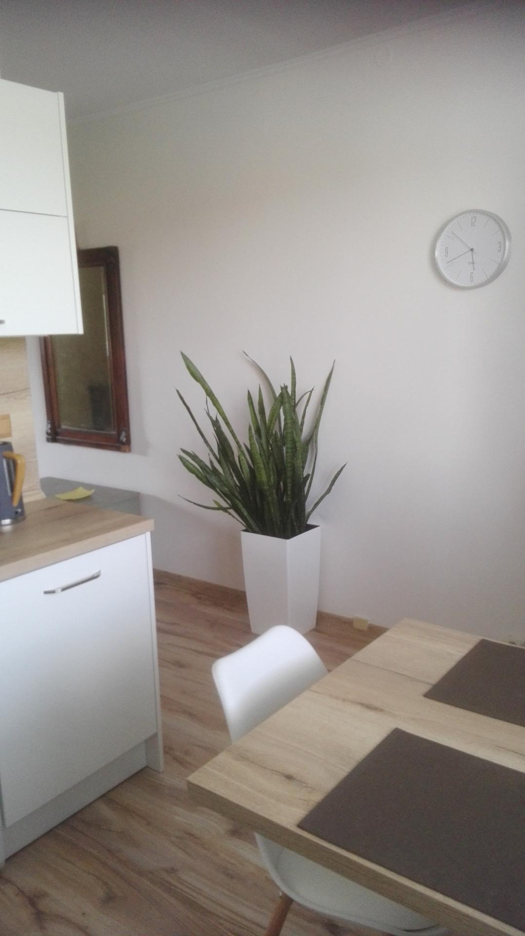 Nová kuchyňa v byte - Obrázok č. 12