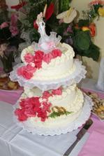 Skvělý dort naších snů