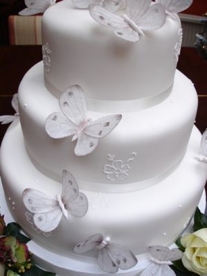 Yummy cakes! :) - This sort of what we are having but there will be silve ribbon with three butterflies on each tier two on the right and one of the left :)