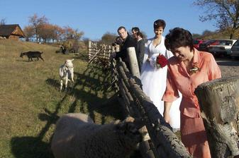 ... a s kozami :-)