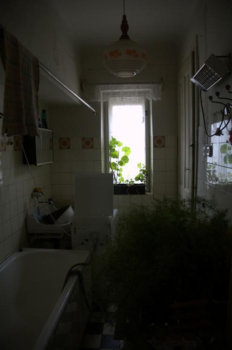 Od začátku do ... - Koupelna, kdysi dávno tu snad byla předsíň a koupelna neexistovala, dům je z roku 1924 a tahle znouzectnost se budovala někdy okolo roku 1960...