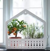 Ikea.sk mini skleník (alebo možno svietnik) ikea ps 2014 29,99