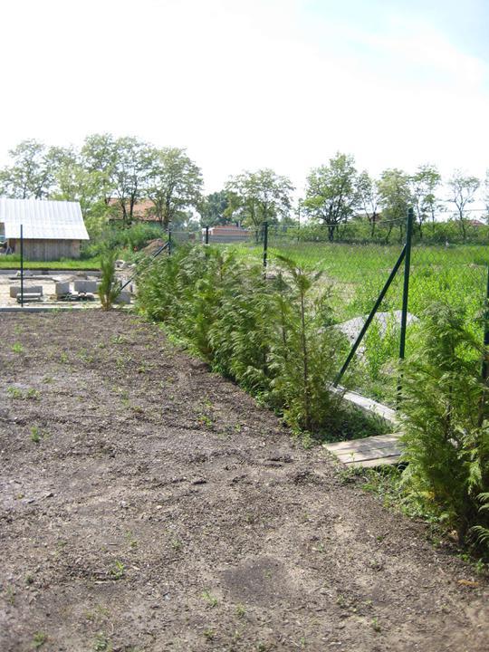 Nas dom - postupne - zadny plot, ten uz nie je