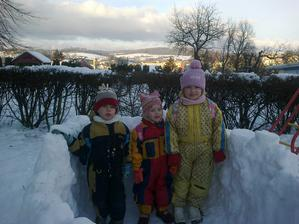 školkáčci leden 2013