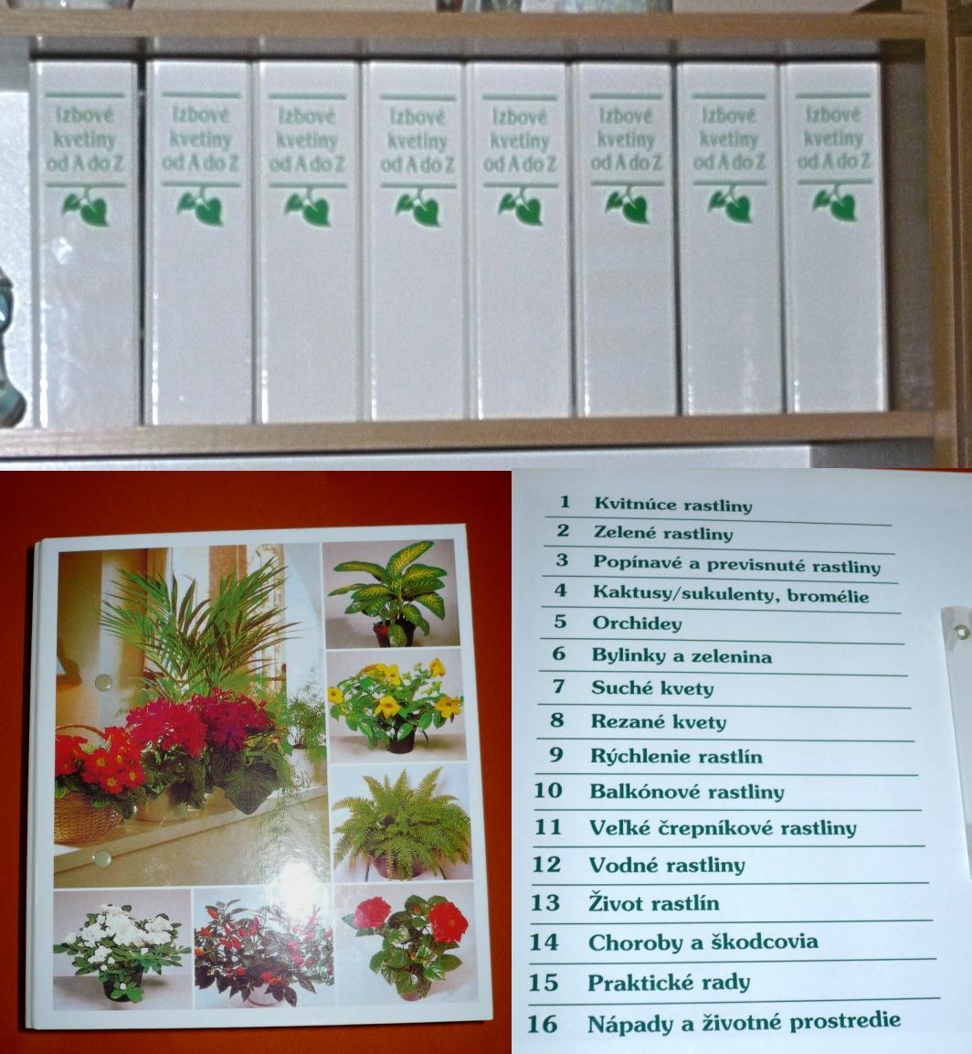 Výnimočná zbierka takmer 1000 kariet o kvetoch - Obrázok č. 3