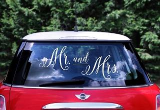 Svatební dekorace na auto - Obrázek č. 22