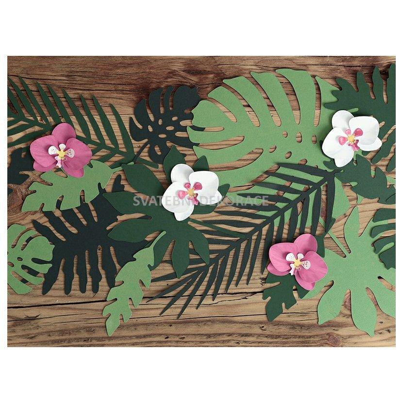 papírová orchidej - růžová a bílá 6 ks - Obrázek č. 1
