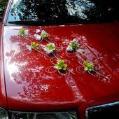 """výzdoba svatebního auta - """"7 čtyřlístků"""","""