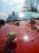 """Výzdoba na auto """"motýlí svatba"""","""