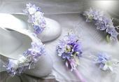 Klipy na boty- fialkové tóny, 39