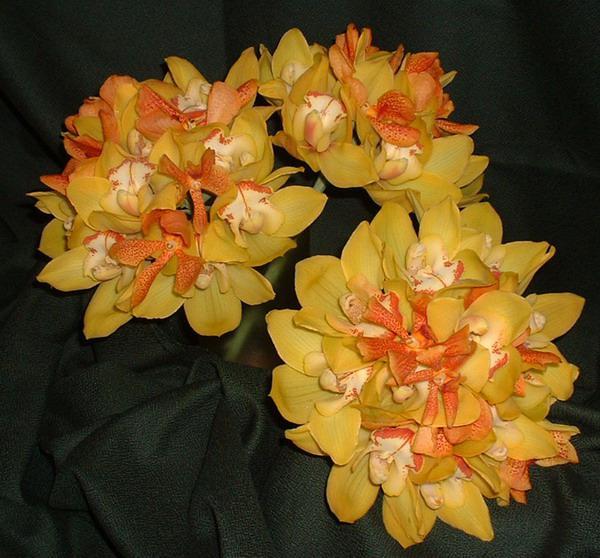 Kytice - orchideje - Obrázek č. 1