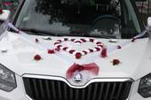 Výzdoba na auto nevěsty a ženicha, 4x kytice atd.,