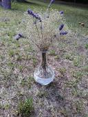 Vázičky se sušeným nevěstiným závojem a levandulí,