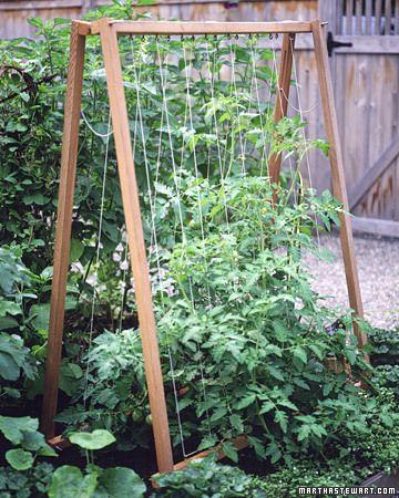 Zahrada - inspirace - Obrázek č. 136