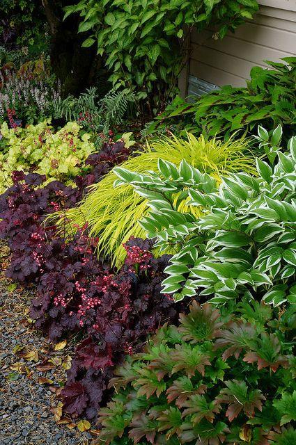Zahrada - inspirace - Obrázek č. 56